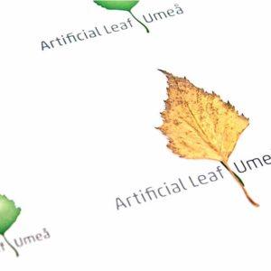 Artifical Leaf Umeå und Solar Fuels Umeå
